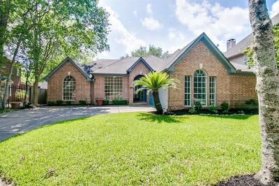 Sugar Land Single Family Home For Sale: 1518 Briar Cottage Court