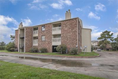 Dickinson Condo/Townhouse For Sale: 2501 Gulf Freeway #271B
