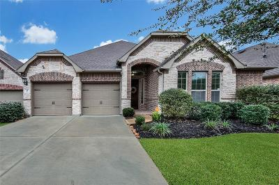 Tomball Single Family Home For Sale: 34 Danby Place