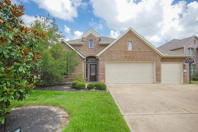 The Woodlands Single Family Home For Sale: 71 W Lasting Spring Circle