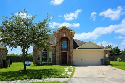 Tomball Single Family Home For Sale: 18503 Bristol Point Lane