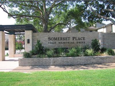 Houston Condo/Townhouse For Sale: 12625 Memorial Drive #40