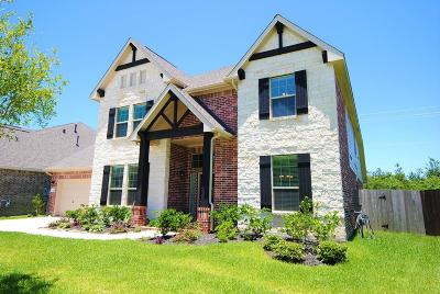 Friendswood Single Family Home For Sale: 4206 Evergreen Drive