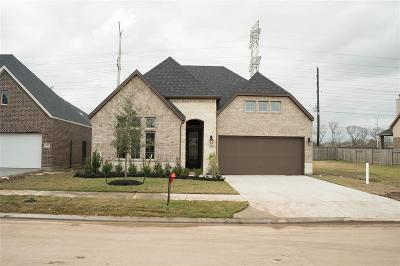 Sugar Land Single Family Home For Sale: 4910 Thunder Creek