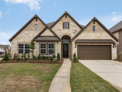 Sugar Land Single Family Home For Sale: 4103 Dogwood Canyon