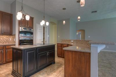 Sugar Land Single Family Home For Sale: 1214 Moss Dale Drive