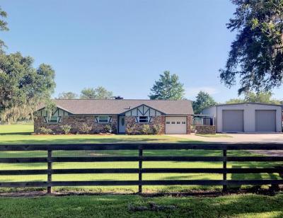 Brazoria Single Family Home For Sale: 4602 County Road 347