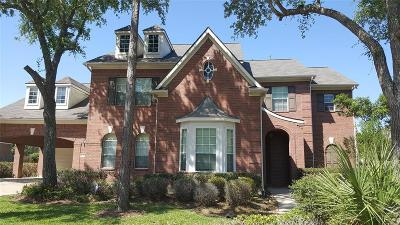Friendswood Single Family Home For Sale: 3003 Harvest Hill Drive