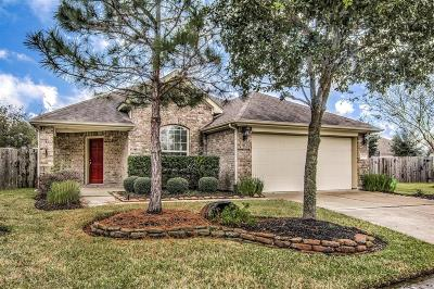 Houston Single Family Home For Sale: 14303 Brody Falls Court