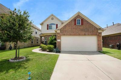 Tomball Single Family Home For Sale: 19247 Carriage Vale Lane