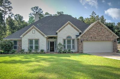 Huffman Single Family Home For Sale: 28811 Trace Vista Circle