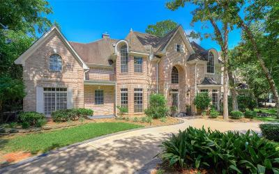 Conroe, Spring, The Woodlands Single Family Home For Sale: 2 Misty Point