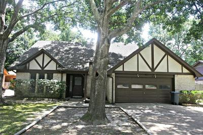 Houston Single Family Home For Sale: 10007 Greencreek Drive