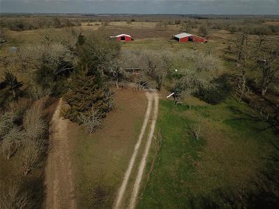 Navasota Farm & Ranch For Sale: 13164 County Road 446