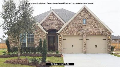 Conroe Single Family Home For Sale: 225 Trillium Park Loop