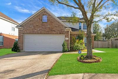 Spring Single Family Home For Sale: 743 New Pines Drive
