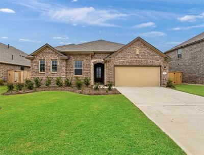 Texas City Single Family Home For Sale: 3120 Red Pebble Lane