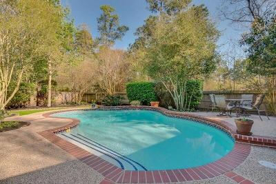 The Woodlands Single Family Home For Sale: 14 E Shadowpoint Circle