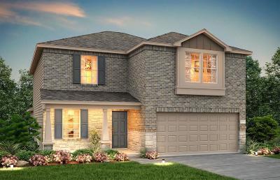 Houston Single Family Home For Sale: 14603 Aspen Peak Drive