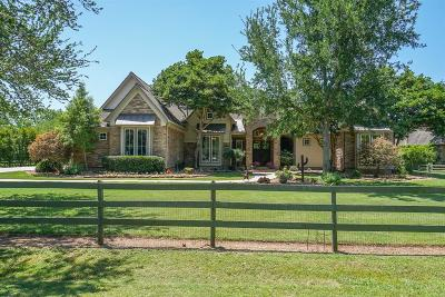 Fulshear Single Family Home For Sale: 31835 Churchill Field Lane