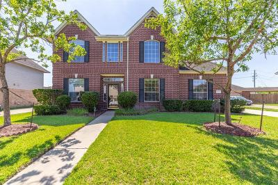 Sugar Land Single Family Home For Sale: 10106 Elder Mill Lane
