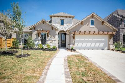Katy Single Family Home For Sale: 6422 Elrington Heights Lane