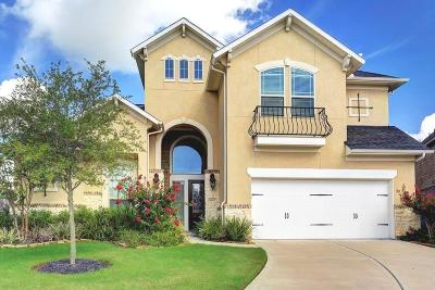 Sugar Land Single Family Home For Sale: 6607 Tara Creek Court