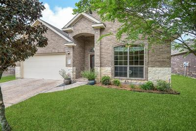 The Woodlands Single Family Home For Sale: 170 Black Swan Place