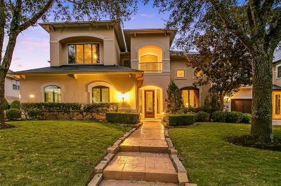 Houston Single Family Home For Sale: 3331 Louvre Lane