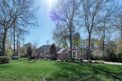 Montgomery Single Family Home Option Pending: 360 Ridgelake Scenic Drive
