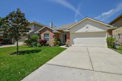 Tomball Single Family Home For Sale: 20115 Mammoth Falls Drive