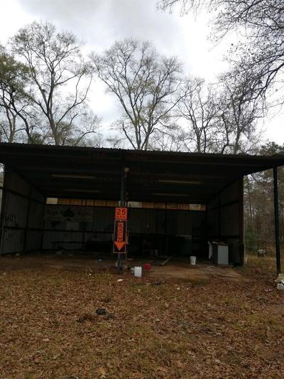 Conroe Single Family Home For Sale: 17235 Highway 105 E