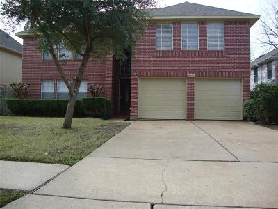 Sugar Land Single Family Home For Sale: 16406 Flint Run Way