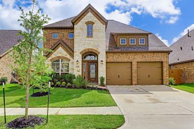 Single Family Home For Sale: 27926 Chiapas Drive