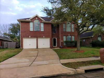 Friendswood Single Family Home For Sale: 16719 Lighthouse View Drive