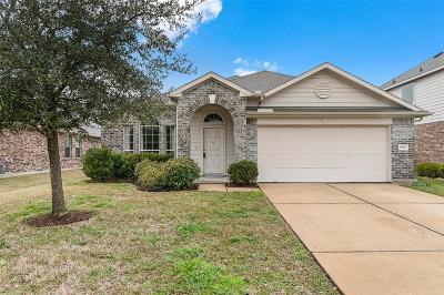 Houston Single Family Home For Sale: 13906 Fayridge Drive