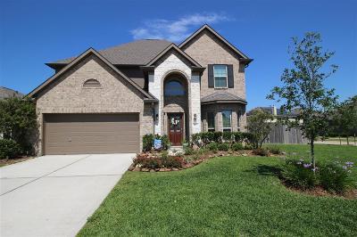 League City Single Family Home For Sale: 4847 Piares Lane