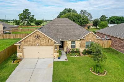 Hockley Single Family Home For Sale: 20403 Barrel Run Drive