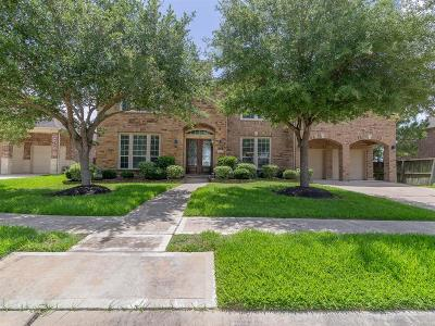 Pearland Single Family Home For Sale: 2703 Raven Ridge Drive