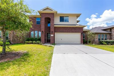 Fort Bend County Single Family Home For Sale: 18931 Pine Harvest Lane