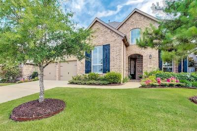 Katy Single Family Home For Sale: 28010 Barker Hollow Drive