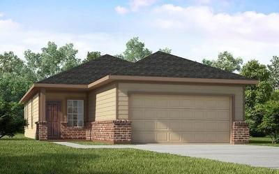 Harris County Single Family Home For Sale: 13247 Ashley Meadow Lane