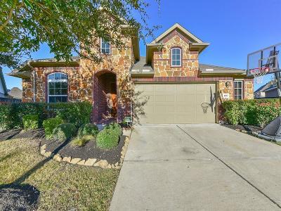 Katy Single Family Home For Sale: 4807 Sequoia Park
