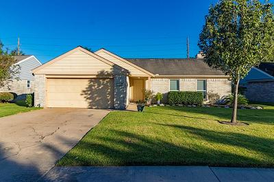 Sugar Land Single Family Home For Sale: 607 Rolling Mill Drive