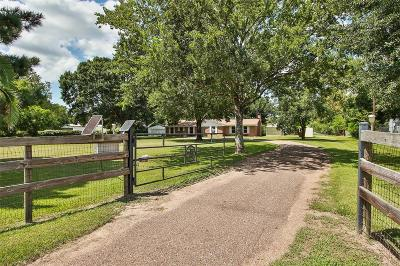 Tomball Single Family Home For Sale: 19022 Mueschke Road