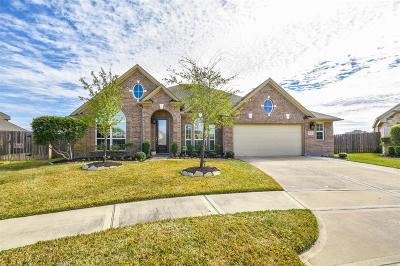 Tomball Single Family Home For Sale: 18206 Cameron Reach Court