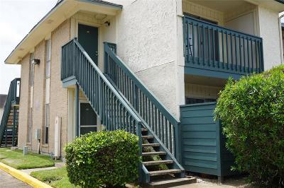 Houston Condo/Townhouse For Sale: 250 El Dorado Boulevard #272