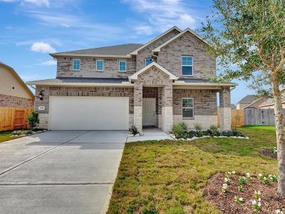 Rosenberg Single Family Home For Sale: 5910 Rose Quartz