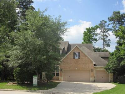 The Woodlands Single Family Home For Sale: 22 Renoir Trail Place