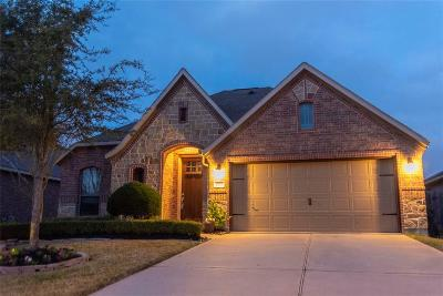 Katy Single Family Home For Sale: 2323 Snowy Egret Drive